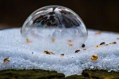 Полкруга пузыря мыла Стоковая Фотография