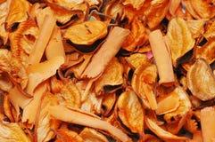 по мере того как предпосылка может высушить используемый помеец листьев Стоковые Изображения