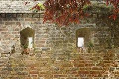 по мере того как предпосылка может стена крепости используемая изображением Стоковая Фотография