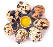 по мере того как предпосылка eggs много триперсток Стоковое Изображение