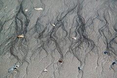 По мере того как прилив отступает он выходит своя метка на песок стоковая фотография