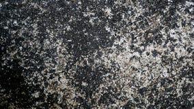 по мере того как стена пользы цемента предпосылки Чернота испещрянная с белизной Стоковая Фотография RF