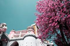 1995 по мере того как столетие культурный da замока датирует ландшафт lisbon ixth наследия причаливают около мира взгляда unesco  стоковые фото