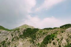 по мере того как туман настольного компьютера предпосылки вниз падая идет гора montenegro komovi славная грейте на солнце Туман п Стоковые Фото