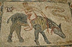 Пол мозаики, Volubilis, Марокко Стоковая Фотография RF