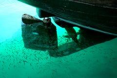 Под морем Стоковые Изображения RF