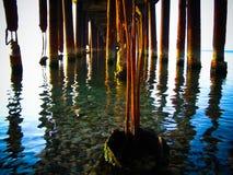Под мостом на пляже Стоковые Изображения