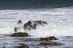 Полная вода Стоковое Изображение RF