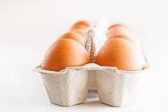 Полная коробка коричневых яичек на белой предпосылке Стоковое фото RF