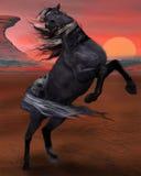 Полная рвения лошадь Стоковые Фотографии RF