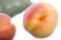 Поднимающее вверх абрикоса близкое Стоковое Изображение RF