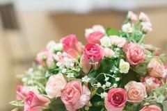 поднимающее вверх близких цветков красотки естественное розовое розовое Стоковое Фото