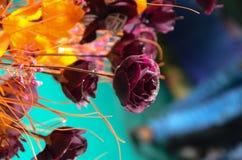 поднимающее вверх близких цветков красотки естественное розовое розовое Стоковая Фотография RF