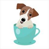 Поднимите терьера домкратом Рассела в голубом чашка, иллюстрации, комплекте для моды младенца Стоковое Изображение RF
