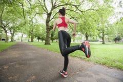 Полнометражное вид сзади женщины jogging в парке Стоковые Изображения RF