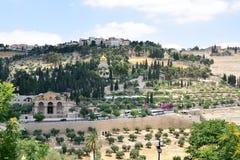 полностью дорога людей оливок держателя Иерусалима кипариса церков столетий старая Стоковая Фотография RF