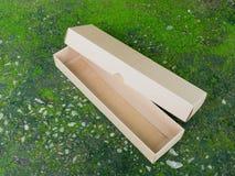 Поднос хранения и коробка крышки на зеленом мхе Стоковое Изображение RF