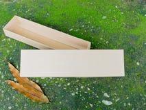 Поднос хранения и коробка крышки на зеленом мхе Стоковые Фотографии RF