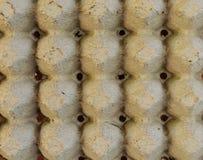 Поднос яичка Стоковые Изображения RF