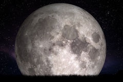 Полнолуние на ноче Трава на переднем плане Улучшите для предпосылки, экземпляр-космоса стоковые изображения