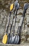 Полные весла каяка Стоковые Фотографии RF