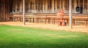 Полные корзина и землянка бейсбола Стоковое Фото