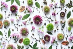 Полный цветочный узор рамки стоковая фотография
