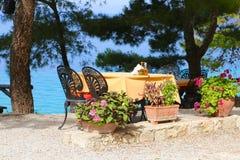 подныривание клуба кафа пляжа стоковое изображение rf