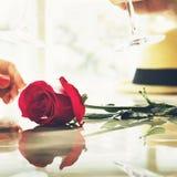 Подняла свежая концепция страсти влюбленности сада цветения цветеня Стоковое фото RF