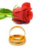 Подняли и обручальные кольца Стоковое фото RF