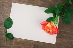 Поднял и чистый лист Стоковые Фото