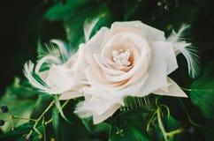 Поднял & Hairpiece пера Bridal Стоковая Фотография RF
