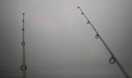 2 подобных рыболовной удочки Стоковое Изображение RF