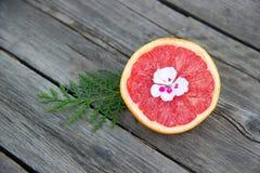 Половина грейпфрута, кипариса и цветка на деревянном столе Стоковое Изображение RF