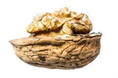 Половина грецкого ореха изолированного на белой предпосылке Стоковые Фотографии RF