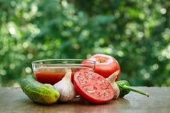 Половина томата, чеснока, сока и горячего перца Стоковые Изображения