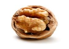 Половина часть грецкого ореха Стоковое фото RF