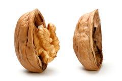 Половина часть грецкого ореха Стоковые Изображения