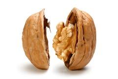 Половина часть грецкого ореха Стоковые Изображения RF
