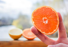 Половинные апельсины в руке девушки Стоковое Фото
