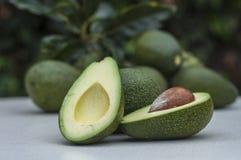 Половинный авокадо Стоковые Изображения RF