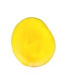 Половинный плодоовощ манго Стоковое фото RF
