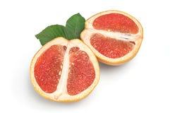 2 половины грейпфрута при зеленые листья изолированные на белой предпосылке Стоковая Фотография RF
