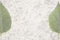 2 половины листают на старой текстуре Стоковое Изображение