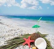 Половины кокоса морем Стоковые Изображения