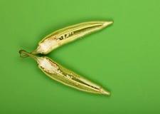 Половины отрезанного перца горячего chili jalapeno на зеленом цвете Стоковое Фото
