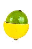 Половины плодоовощей лимона и известки Стоковое Изображение