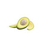 2 половины свежего зеленого авокадоа Стоковое Изображение RF