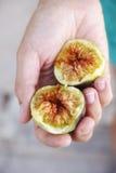 2 половины свежей смоквы в руке женщины Стоковые Фото