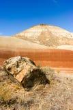 Положение Орегона кроватей дня Джона местности утесов ископаемое стоковое фото rf